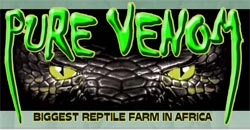 The biggest Reptile Farm in Africa - Activities, Adventure and Things to Do on the South Coast of KwaZulu-Natal