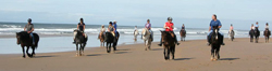 Selsdon Park Beach Horse riding South Coast KwaZulu Natal